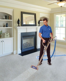See your carpet transform before your eyes! You will literally feel the difference under your feet.